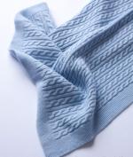 Текстиль для детей: полотенца, халаты, постельное бельё и др.. Плед детский Dolcezza Ceruleo (Дольчеза Черулео) Голубой 70х90 см от Fiori di Venezia