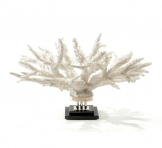 Предметы декора Deluxe. Коралл Branch II