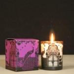 Ароматическая свеча Зимний сад