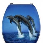 Jump сиденье для унитаза синее с микролифтом крышки фотодекор Три Дельфина