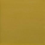 Исполнение: горчично-желтый пластик (PP)