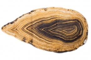 . Коврик для ванной Habidecor Амбра 885 Хлопковый декор Дерево