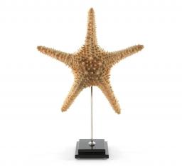 Предметы декора Deluxe. Морская звезда на подставке (43 см)