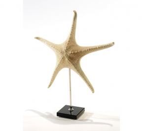 Предметы декора Deluxe. Звезда морская II