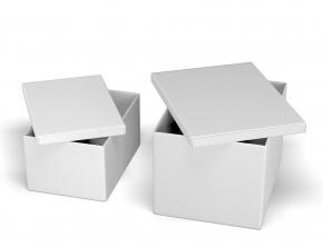. Короб с крышкой белый прямоугольный Calligaris Clever кожаный