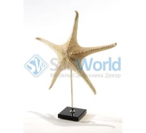 Звезда морская II